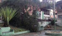 ESTRAGOS-CAUSADOS-PELA-CHUVA-02