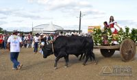 FESTIVAL-DE-CARROS-DE-BOI-DE-IBERTIOGA-VERTENTES-DAS-GERAIS-JANUARIO-BASÍLIO-24pg