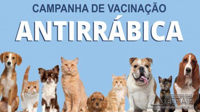 Resultado de imagem para Vacinação Antirrábica