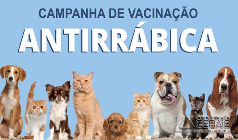 CAMPANHA DE VACINAÇÃO ANTIRRÁBICA TEM INÍCIO NA PRÓXIMA SEMANA EM BARBACENA