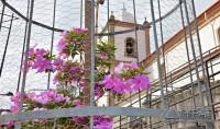 flores-do santuario-da-piedade-02jpg