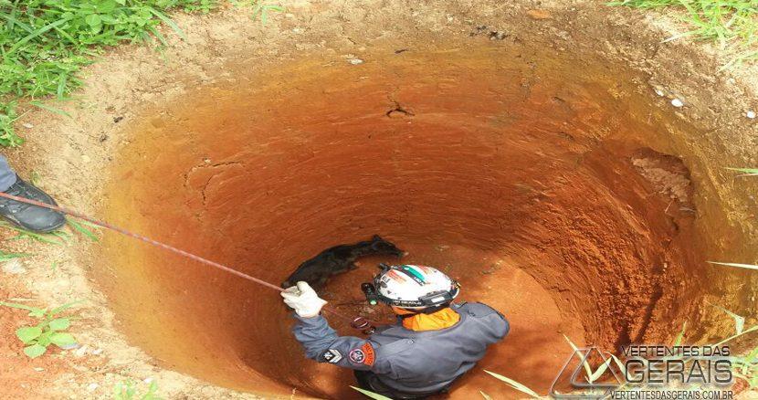 resgate-de-animal-que-caiu-em-cisterna-02