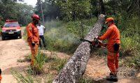 Bombeiros-mineiros-na-operação-moçambique-foto-04