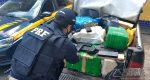 POLÍCIA RODOVIÁRIA FEDERAL APREENDE GRANDE QUANTIDADE DE MACONHA NA BR-040