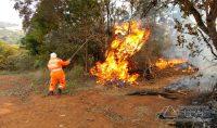 bombeiros-combatem-incendio-em-areas-de-vegetação-em-barbacena