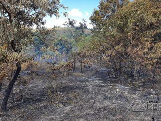 bombeiros-combatem-incendio-em-vegetação-em-dr-sa-fortes-mg-01