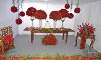 encerramento-da-festa-das-rosas-de-2017-em-barbacena-foto-januario-basílio-vertentes-das-gerais-24pg
