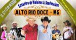 ALTO RIO DOCE SEDIA, DE 11 A 13 DE OUTUBRO, O ENCONTRO REGIONAL DE VIOLEIROS