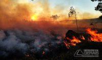 incendio-em-área-de-vegetação-02