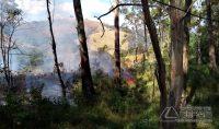 incendio-em-vegetação-em-barbacena-01