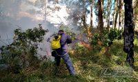 incendio-em-vegetação-em-barbacena-02jpg