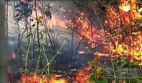 incendio-em-vegetação-em-barbacena-03jpg