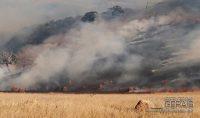 incendio-em-vegetação-no-belvedere-em-barbacena-03