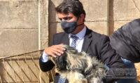 maus-tratos-contra-animais-em-santos-dumont-mg