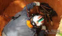 resgate-de-animal-que-caiu-em-cisterna-01