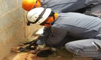 resgate-de-animal-que-caiu-em-cisterna-03
