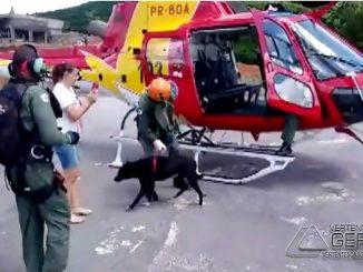 resgate-de-cão-no-sul-de-minas