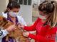 vacinação-antirrabica-em-barbacena-foto-01